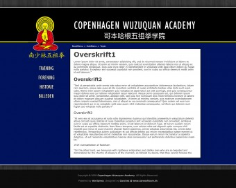 One of the designs for Copenhagen Wuzuquan Academy